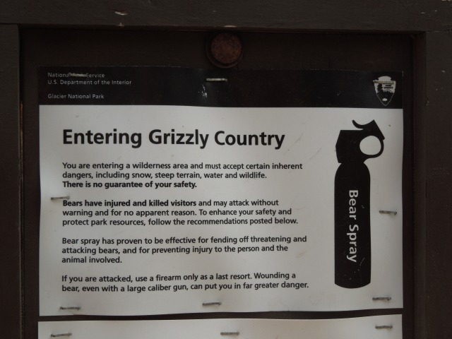 clear sign about grizzlies
